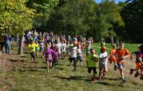 Holdenwood Trail Run